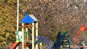 Campo da giuoco e foglie gialle di autunno video d archivio