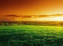 Campo da grama da mola no tempo do por do sol fotos de stock royalty free