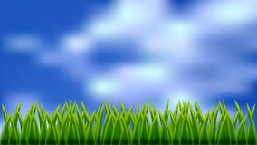 Campo da grama e do céu Fotografia de Stock