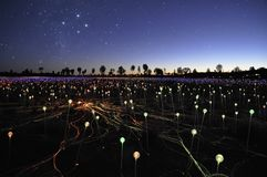 Campo da luz do artista Bruce Munro fotografia de stock