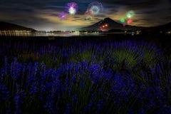 Campo da montanha e da alfazema de Fuji com festival do fogo de artifício no parque de Oishi, lago Kawaguchi, Japão Imagens de Stock