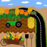 Campo da paisagem, colheita e ambiente natural ilustração royalty free