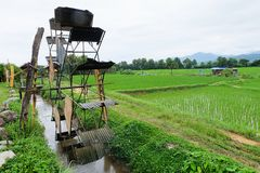 Campo da prensa e do arroz da turbina imagens de stock