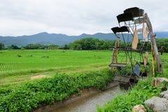 Campo da prensa e do arroz da turbina imagens de stock royalty free