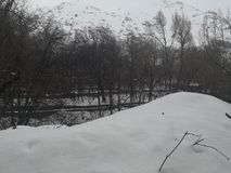 Campo da queda da neve do inverno imagem de stock royalty free