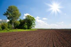 Campo da terra de exploração agrícola Fotografia de Stock Royalty Free