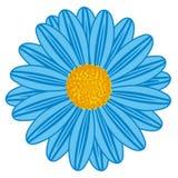Campo Daisy Blue ilustração stock
