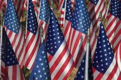 Campo das bandeiras Imagens de Stock Royalty Free