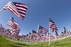 Campo das bandeiras Fotos de Stock Royalty Free