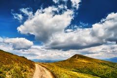Campo das montanhas da paisagem da grama fresca verde sob o céu azul Imagem de Stock Royalty Free
