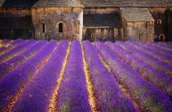 Campo de Abbey Senanque y de la lavanda, Francia Fotografía de archivo
