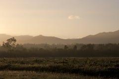 Campo de Austrália na manhã Imagem de Stock