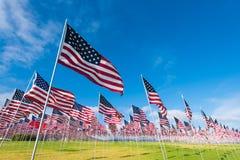 Campo de bandeiras americanas Imagens de Stock Royalty Free