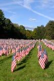 Campo de bandeiras americanas durante o Dia da Independência dos E.U. Fotos de Stock Royalty Free