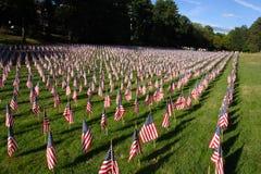 Campo de bandeiras americanas durante o Dia da Independência dos E.U. Imagem de Stock Royalty Free