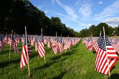 Campo de bandeiras americanas durante o Dia da Independência dos E.U. Imagens de Stock