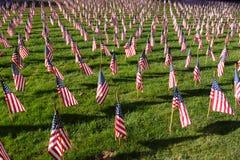 Campo de bandeiras americanas durante o Dia da Independência dos E.U. Foto de Stock