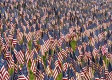Campo de bandeiras dos E.U. Fotos de Stock Royalty Free