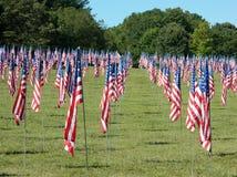 Campo de banderas Fotografía de archivo libre de regalías