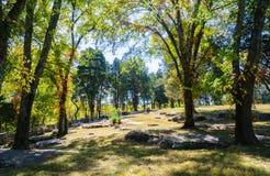 Campo de batalla del nacional del río de las piedras Imagen de archivo
