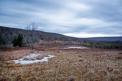 Campo de Canaan Valley y charca del castor en Virginia Occidental Imagen de archivo libre de regalías
