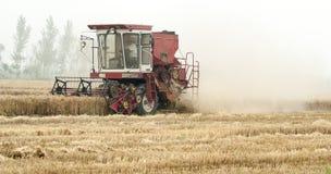 Campo de cereais da colheita mecanizada, China Imagem de Stock