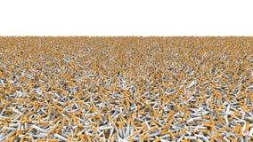 Campo de cigarrillos Imagen de archivo libre de regalías