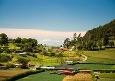 Campo de Costa Rica Fotografía de archivo libre de regalías