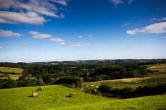 Campo de Cotswolds, Reino Unido Imagem de Stock