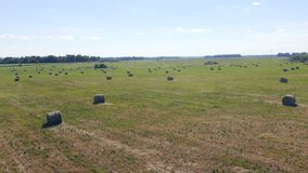 Campo de cultivo cerca de un camino, visión superior metrajes