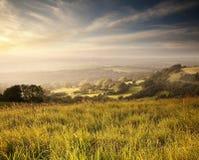 Campo de Dorset Fotografía de archivo libre de regalías