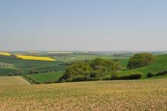 Campo de Dorset Imagen de archivo
