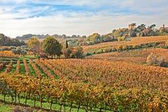 Campo de Emilia Romagna, Itália imagem de stock royalty free