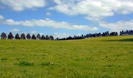 Campo de encontro ao céu azul nebuloso Fotografia de Stock Royalty Free