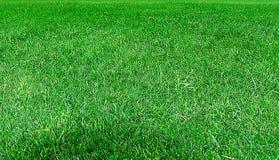 Campo de esportes Imagem de Stock