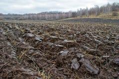 Campo de exploração agrícola arado Imagem de Stock