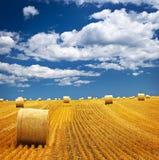 Campo de exploração agrícola com balas de feno Foto de Stock