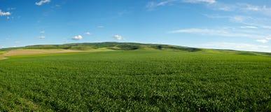 Campo de exploração agrícola de Idaho fotos de stock