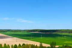 Campo de exploração agrícola do terreno, colheita, prado, verão, linhas elétricas Imagem de Stock