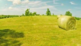 Campo de exploração agrícola em Kentucky video estoque