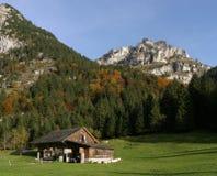 Campo de exploração agrícola nos alpes Fotografia de Stock Royalty Free