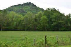 Campo de exploração agrícola ocidental do NC Foto de Stock Royalty Free