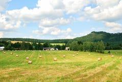 Campo de exploração agrícola segado com os pacotes do feno Fotos de Stock Royalty Free