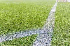 Campo de fútbol artificial Libre Illustration