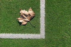 Campo de fútbol artificial del césped, una línea de la esquina del marcador imagen de archivo
