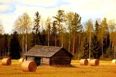 Campo de Finlandia Fotos de Stock Royalty Free