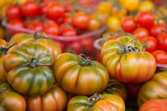 Campo de Fiori Stock Photography