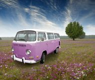 Campo de flor del vehículo de la vendimia Fotografía de archivo