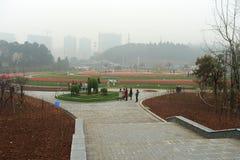 Campo de flor en jardín botánico imagen de archivo
