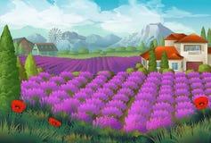Campo de flores de la lavanda ilustración del vector